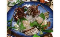 篠島 漁師民宿たから舟ペアお食事券(旬のおすすめコース)