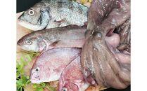 【篠島】海の幸BBQセット(生タコ+季節の魚介類) 4人分