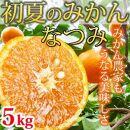 ■初夏のみかんなつみ5kg【2021年発送分】