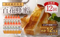【全12回】定期便かの蜂国産百花蜂蜜12kg(とんがり容器1kgを毎月1本お届け)