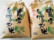 【2021年新米の先行予約】きぬひかり10Kg(5kg×2袋)