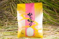 2020年秋収穫分福岡県大川市産ヒノヒカリ3kg【ギフト包装】