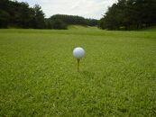 ペア平日セルフ1ラウンドプレー昼食付
