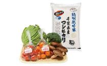 旬の野菜BOX(11月~発送予定)