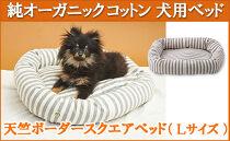 オーガニックコットン犬用ベッド【天竺ボーダースクエアべッド杢グレー】Lサイズ