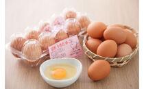 紀州うめ卵