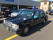 【お手軽】中型タクシーで巡る白浜周遊3時間プラン