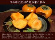 和歌山の種なし柿約7.5kg(秀品:サイズ・品種おまかせ)/紀伊国屋文左衛門本舗[2021年9月下旬~順次発送]