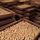 手造りの豆みそとたまり醤油の詰め合わせM
