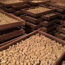 手造りの豆みそとたまり醤油の詰め合わせL