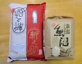 食べ比べセットA 魚沼産コシヒカリ5Kg+新之助(特別栽培米)5kg