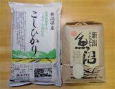食べ比べセットB 魚沼産コシヒカリ5Kg+特別栽培米コシヒカリ(ミネラル栽培)5kg