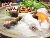 【愛知県産】鍋用天然さばふぐ1.2㎏