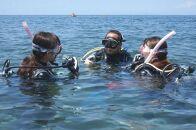 沼津の海でダイビングライセンス取得コース