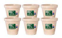 環境に優しい、分解する植木鉢「e-鉢」4号特別セット
