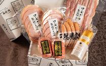 常陸牛ハンバーグ&シャルキュトリーのイイジマお肴セット【肉のイイジマ】