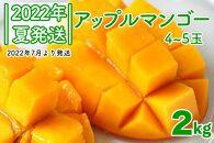 先行受付!【2022年夏発送】NO.1アップルマンゴー!2kg箱(4-5玉)