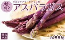 坂出市産 紫アスパラガス