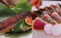 SZ043 土佐の鰹タタキ片身とうなぎ蒲焼きセット