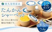 屋久島特産品たんかんシャーベット12カップ
