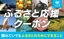 【奄美市】ふるさと応援クーポン