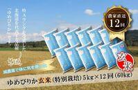 【定期発送】農家直送!減農薬米の定期便【ゆめぴりか 玄米5kg×12回】