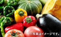 「ベジーズ館」の冬・夏野菜 年2回コース(12月と2022年7月発送)【たっぷりセット】