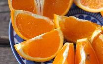 ■【濃厚】有田産清見オレンジ約10kg(M~3Lサイズおまかせ)ご家庭用【2022年2月~順次発送】