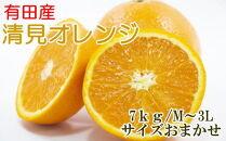 ■【濃厚】有田産清見オレンジ約7kg(サイズおまかせ・秀品)【2022年2月5日~3月31日頃順次発送】