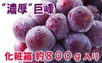 【夏の美味】【フルーツ王国和歌山】濃厚巨峰秀品約800g化粧箱入り