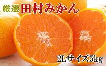 【ブランドみかん】田村みかん約5kg(2Lサイズ・秀品)