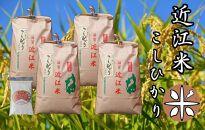 令和3年産新米 近江米こしひかり白米20kg(5kg×4袋) 米粉200g付き