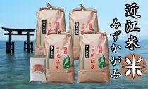 令和3年産新米 近江米みずかがみ白米20kg(5kg×4袋) 米粉200g付き