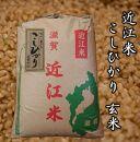 令和3年産新米 近江米こしひかり30kg【玄米】 米粉200g付き