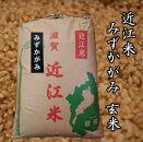 令和3年産新米 近江米みずかがみ30kg【玄米】 米粉200g付き