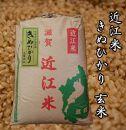 令和3年産新米 近江米きぬひかり30kg【玄米】 米粉200g付き