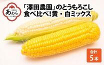 【先行予約】あわら「澤田農園」の朝採り直送 秋とうもろこし 食べ比べ!黄・白色ミックス 5本