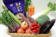 あいさい広場おまかせセット「あいさい黄金米(こがねまい)2㎏」と旬のお野菜 おすすめセット【AS-03】