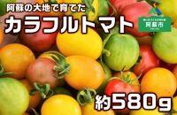 【阿蘇】まるで宝石、カラフルミニトマト 約580g