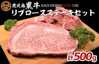 JA鹿児島黒牛リブロースステーキセット(計500g)【R-501】