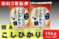 【期間限定】新米15kg令和3年産コシヒカリ(5kg×3袋)千葉県大網白里市産