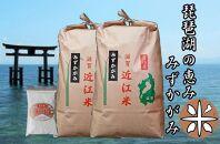 【定期便】令和3年産新米 近江米みずかがみ10kg(5kg×2袋)全3回 米粉200g付き