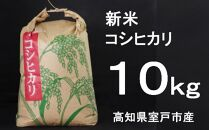TA016 室戸産新米コシヒカリ10kg