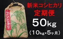 TA018 室戸産新米コシヒカリ計50kg定期便