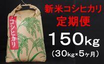 TA020 室戸産新米コシヒカリ計150kg定期便
