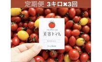 【定期便】美容トマト3kg箱!フルーツトマト専門農場から3ケ月連続でお届け!