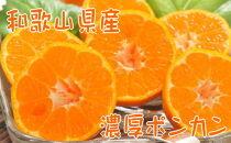 【先行予約】【2022年1月~2月発送】【冬の美味】【農家直送】濃厚ポンカン(ご家庭用)4kg