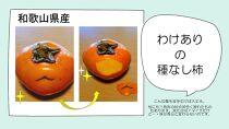 【和歌山県産・訳あり品】種なし柿7.5㎏ 児玉農園より直送