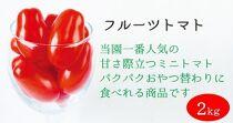 【2021年11月上旬発送】太陽の恵みをたっぷり浴びた フルーツトマト2kg