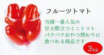 【2021年11月上旬発送】太陽の恵みをたっぷり浴びた フルーツトマト3kg